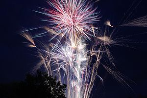 English: Fireworks on the Fourth of July (Photo credit: Wikipedia)