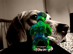 #05 TIHS / Incredible Hulk vs Dr.Beagle